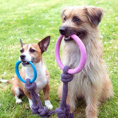 Filova voor dierenwelzijn Beco Hoop On A Rope small en large