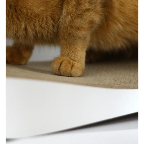 Filova MyKotty TOBI kattenmeubel