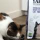 Filova Banner katten Yarrah Sterilized